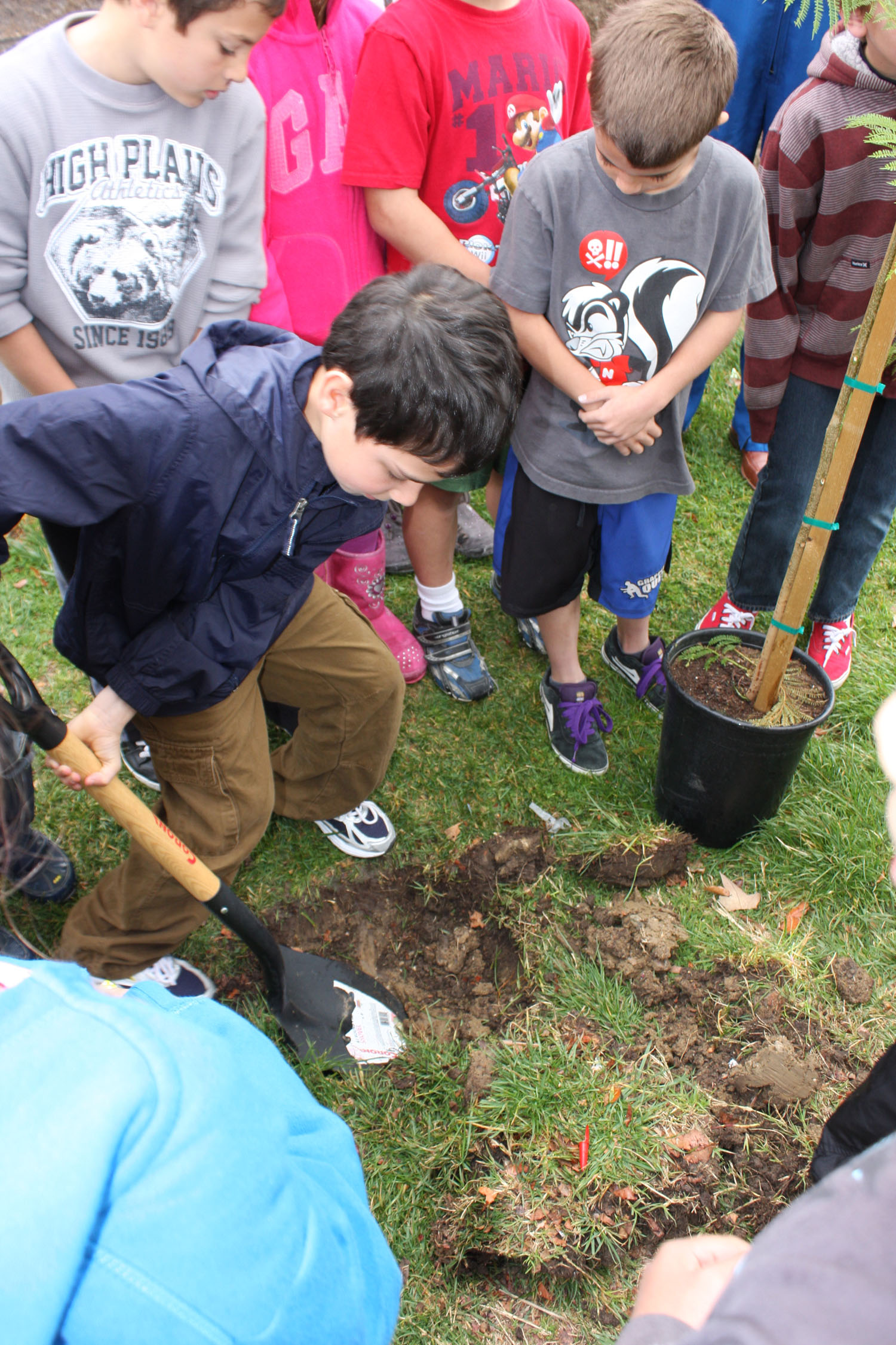 # ci265 Cosmonaut is planting trees in American school 4