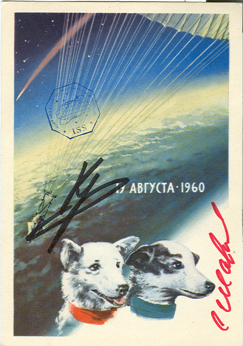 # sd100 Old 1962 Belka-Strelka card flown in cosmos 1