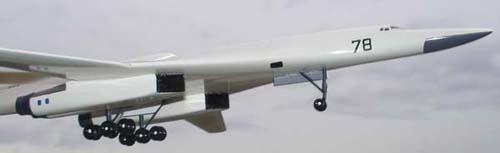 # zhopa043            Tu-160 3