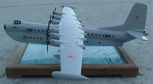 # zhopa120            Beriev 1949 patrol-bomber amphibian project 1