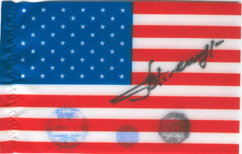 # ff150            ISS-3 expedition flown USA flag 1