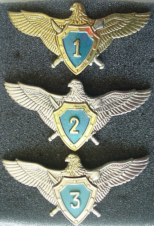 # aw220            Ukraine Air Force fighter pilot class wings 1