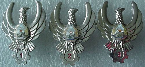 # aw250            Romanian Air Forces wings 1