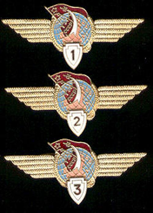 # sw100            Cosmonaut Class wings 1