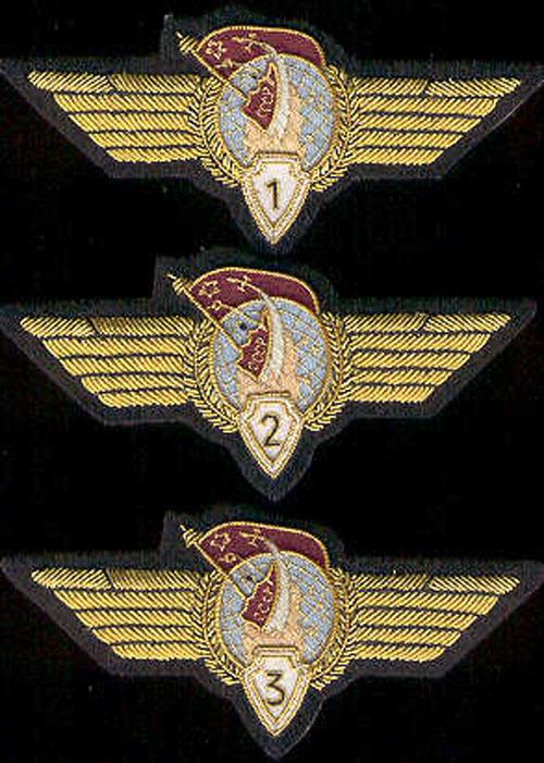 # sw100            Cosmonaut Class wings 2