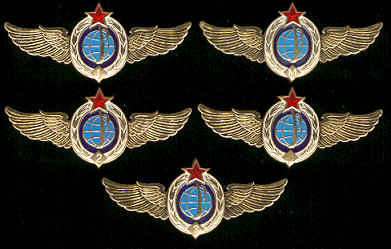 # sw105            Space Forces (Military Space Divisions) wings 1